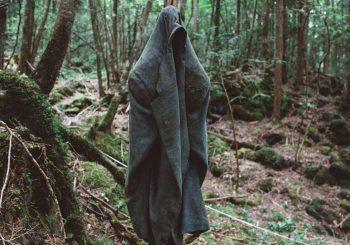Aokigahara forest ป่าลึกลับ